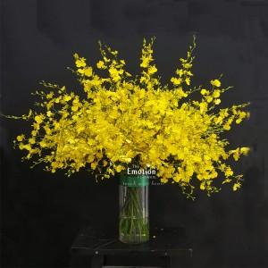 Bình hoa TEF_BI038