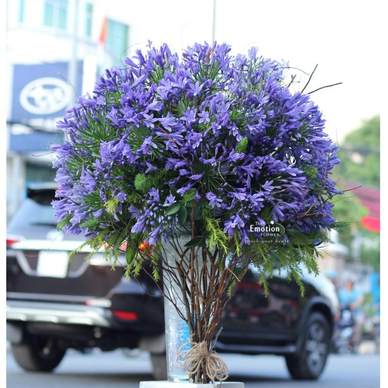 Bình hoa Arapang