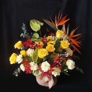Bình hoa TEF_BI046