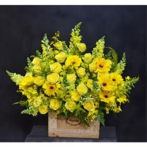 Hoa mùa vàng