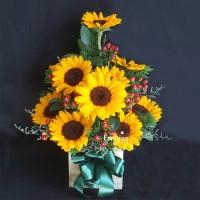 Lẵng hoa TEF_L101