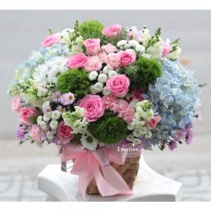 Sắc hoa xuân